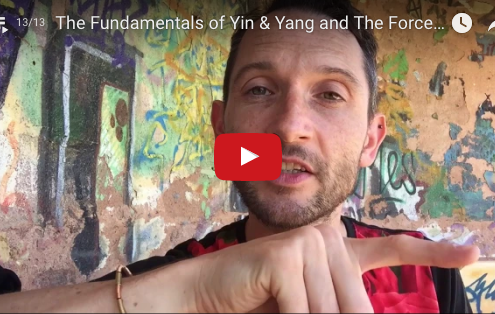 Yin & Yang and The Forces of Nature with Richard Brook