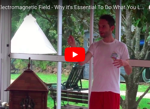 Richard Brook Blog on Electromagnetic Energy From The Heart